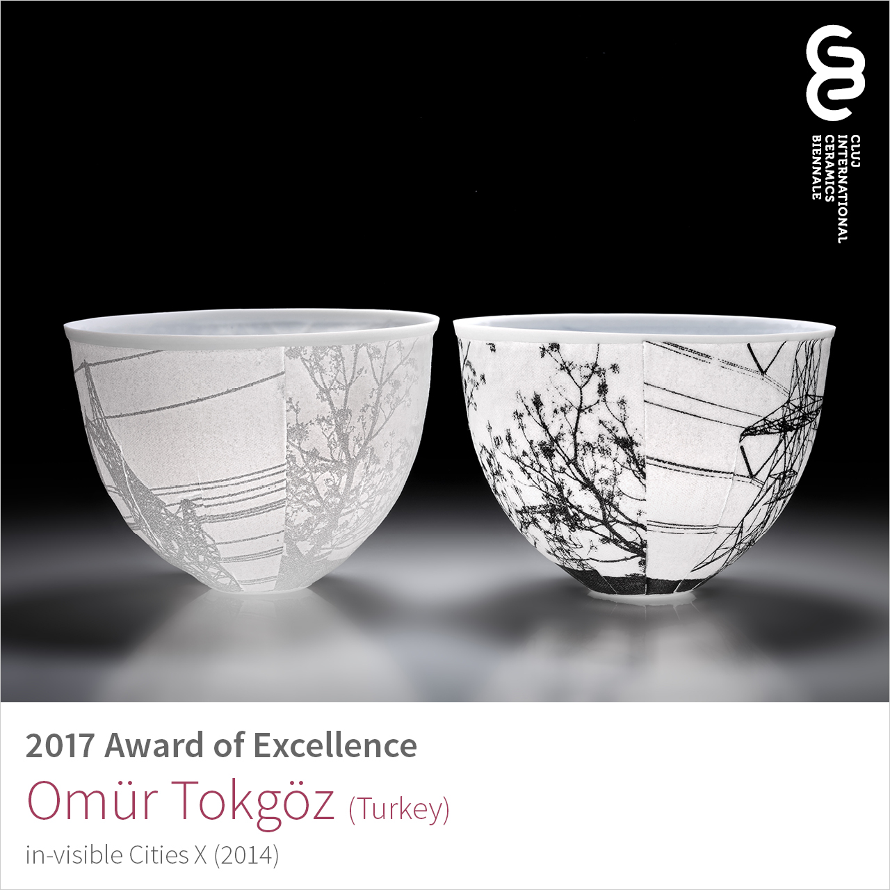 Omür Tokgöz (Turkey), Award of Excellence at Cluj Ceramics Biennale 2017